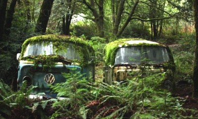 volkswagen_camper_jungle_woods